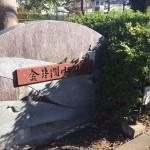 金井関山川島緑地